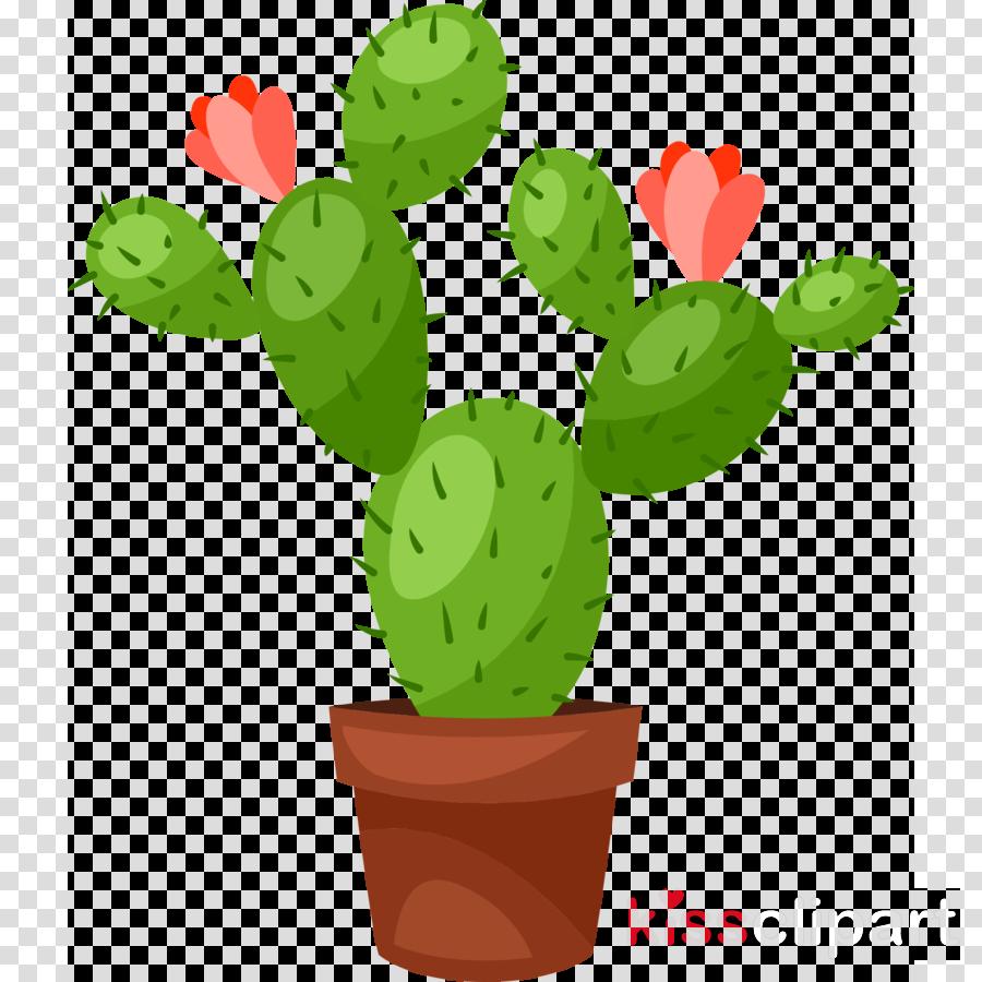 Clipart cactu graphic transparent Cactus Cartoon clipart - Cactus, Flower, Illustration, transparent ... graphic transparent