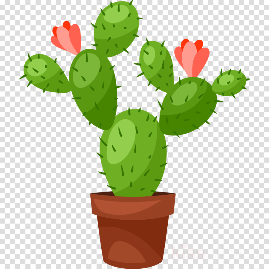 Prickly pear clipart transparent download Cactus Cartoon clipart - Cactus, Flower, Illustration, transparent ... transparent download