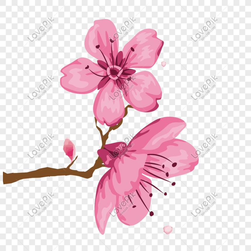 Cadena de flores clipart transparent stock rosa cadena de primer plano de flores de durazno Imagen ... transparent stock