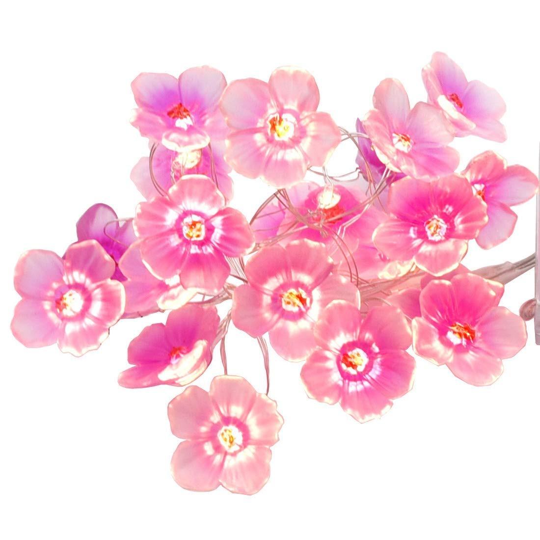 Cadena de flores clipart jpg Luces De La Cadena De Flores Luces De La Secuencia De La ... jpg
