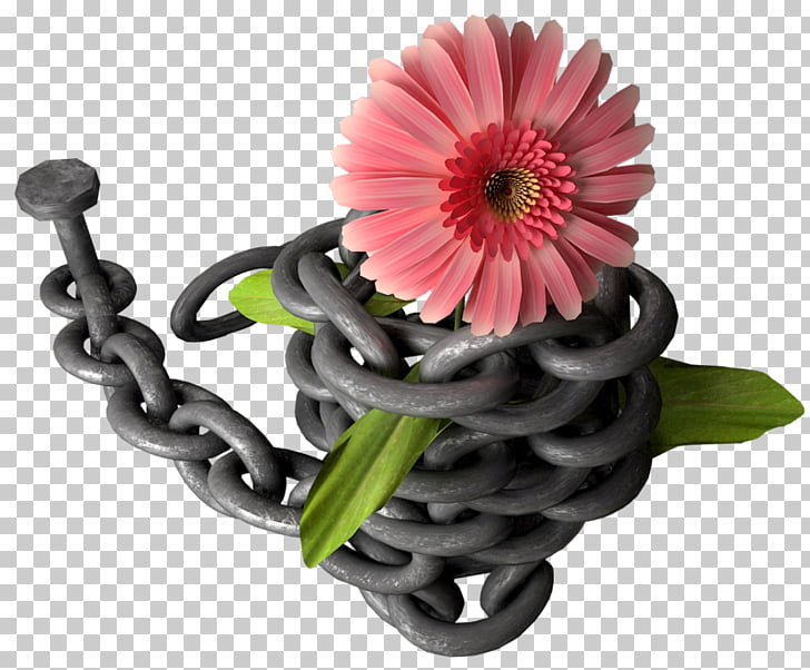 Cadena de flores clipart vector Transvaal Daisy Desktop Desktop Pomeranian Mount Fuji, cadena de ... vector