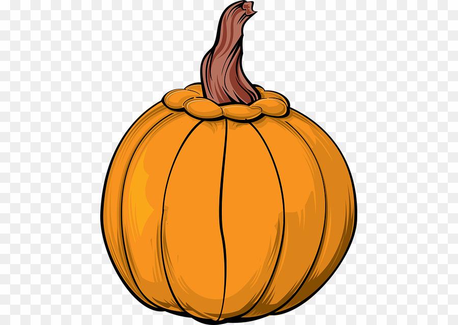 Calabaza clipart vector transparent Pumpkin PNG Jack-o\'-lantern Clipart download - 505 * 640 - Free ... vector transparent