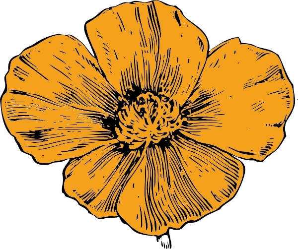 California poppy flower clipart banner transparent California Poppy clip art Free vector in Open office drawing svg ... banner transparent