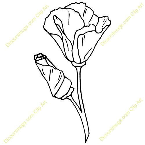 California poppy flower clipart picture royalty free California Poppy Clip Art Californiapoppy | Flowers | California ... picture royalty free