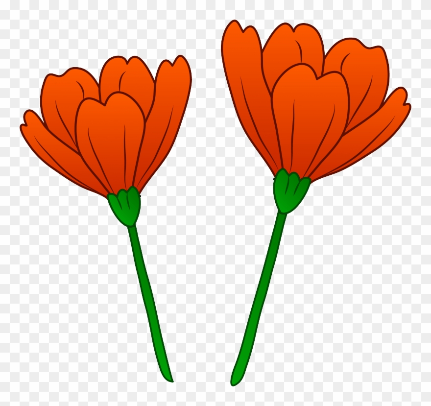 California poppy flower clipart graphic free stock Picture California Poppy Clipart - Poppy Flower Art Transparent ... graphic free stock