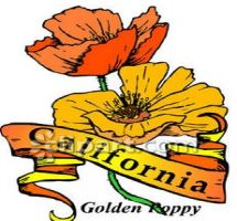 California state flower clipart jpg library Prudential california realty clipart - ClipartFest jpg library