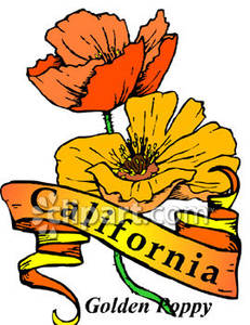 California state flower clipart clip art black and white stock California state flower clipart - ClipartFest clip art black and white stock