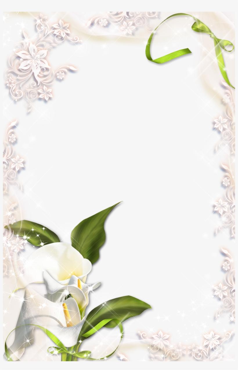 Calla lily border clipart clip art transparent library Image Of Calla Lily Clipart - White Calla Lily Border Transparent ... clip art transparent library