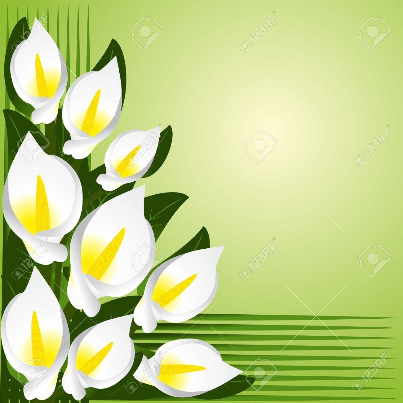 Calla lily border clipart svg royalty free stock Stock Vector | Recipes | Calla lily, Flowers, Lily svg royalty free stock