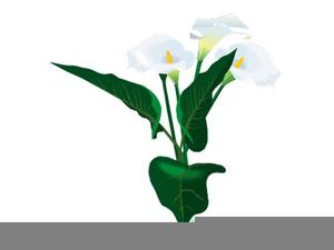 Calla lily border clipart jpg stock Calla Lily Border Clipart | Free Images at Clker.com - vector clip ... jpg stock