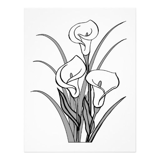 Calla lily clipart black white clip art black and white library Image of Calla Lily Clipart #5743, Calla Lily Stencil - Clipartoons ... clip art black and white library