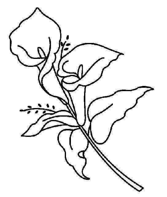 Calla lily clipart black white jpg library Free Calla Lily Clipart, Download Free Clip Art, Free Clip Art on ... jpg library