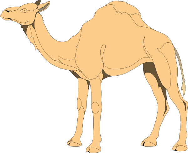 Camel clipart outline picture library download Camel Outline Clip Art at Clker.com - vector clip art online ... picture library download