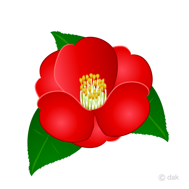 Camella clipart png free stock Camellia Flower Clipart Free Picture Illustoon png free stock