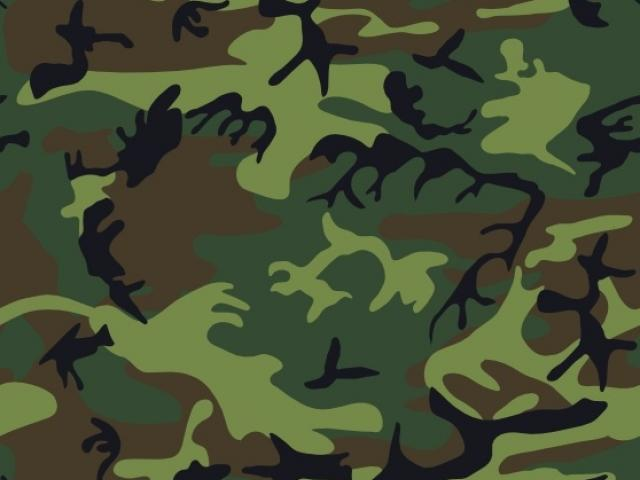 Camo images clipart picture freeuse Free Camo Clipart, Download Free Clip Art on Owips.com picture freeuse
