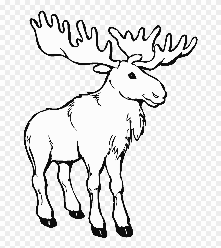Canada animals clipart png black and white download Caribou Animals Printable Pages Drawings And - Canada Day Coloring ... png black and white download