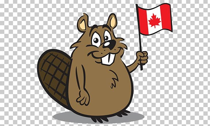 Canada animals clipart banner freeuse stock Canada North American Beaver PNG, Clipart, American Flag, Animal ... banner freeuse stock