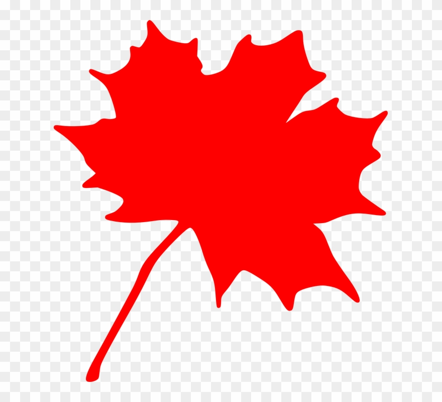 Canada clipart leaf clip art library download Canadian Maple Leaf Clip Art - Red Maple Leaf Clipart - Png Download ... clip art library download