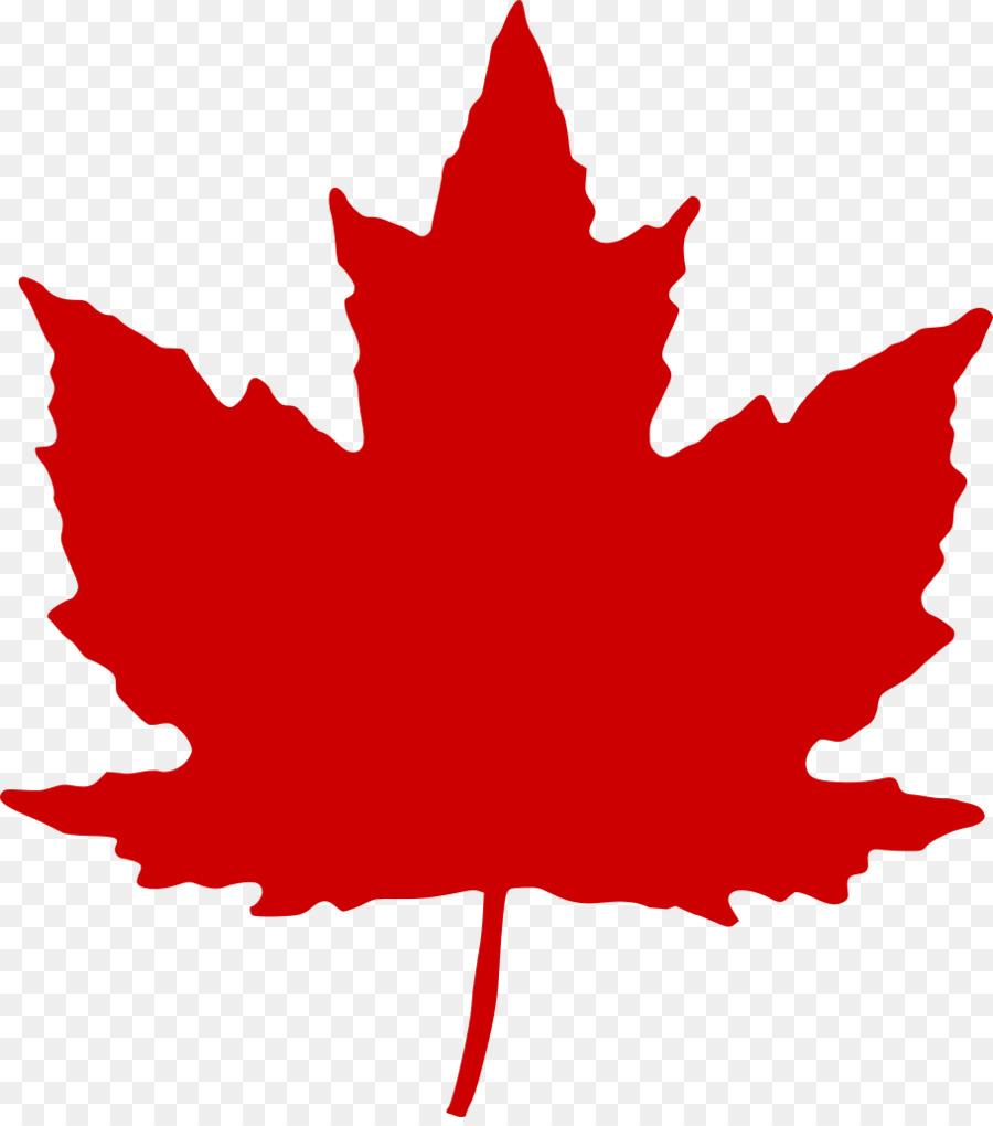 Canada clipart leaf jpg transparent library Canada Maple Leaf clipart - Leaf, Tree, transparent clip art jpg transparent library