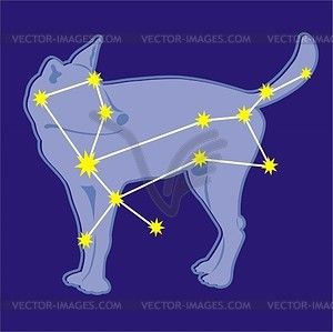Canis major clipart clip free download Constellation Canis Major - vector clipart | stuff | Vector clipart ... clip free download