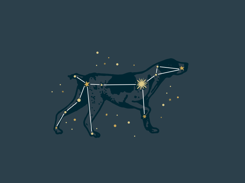 Canis major clipart vector transparent library Canis Major Constellation | Tats | Constellation tattoos, Dog ... vector transparent library