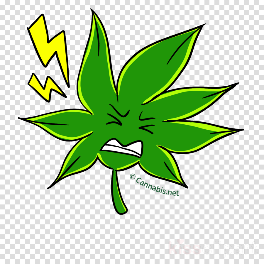 Cannabis flower clipart clip art Black And White Flower clipart - Leaf, Plants, Green, transparent ... clip art