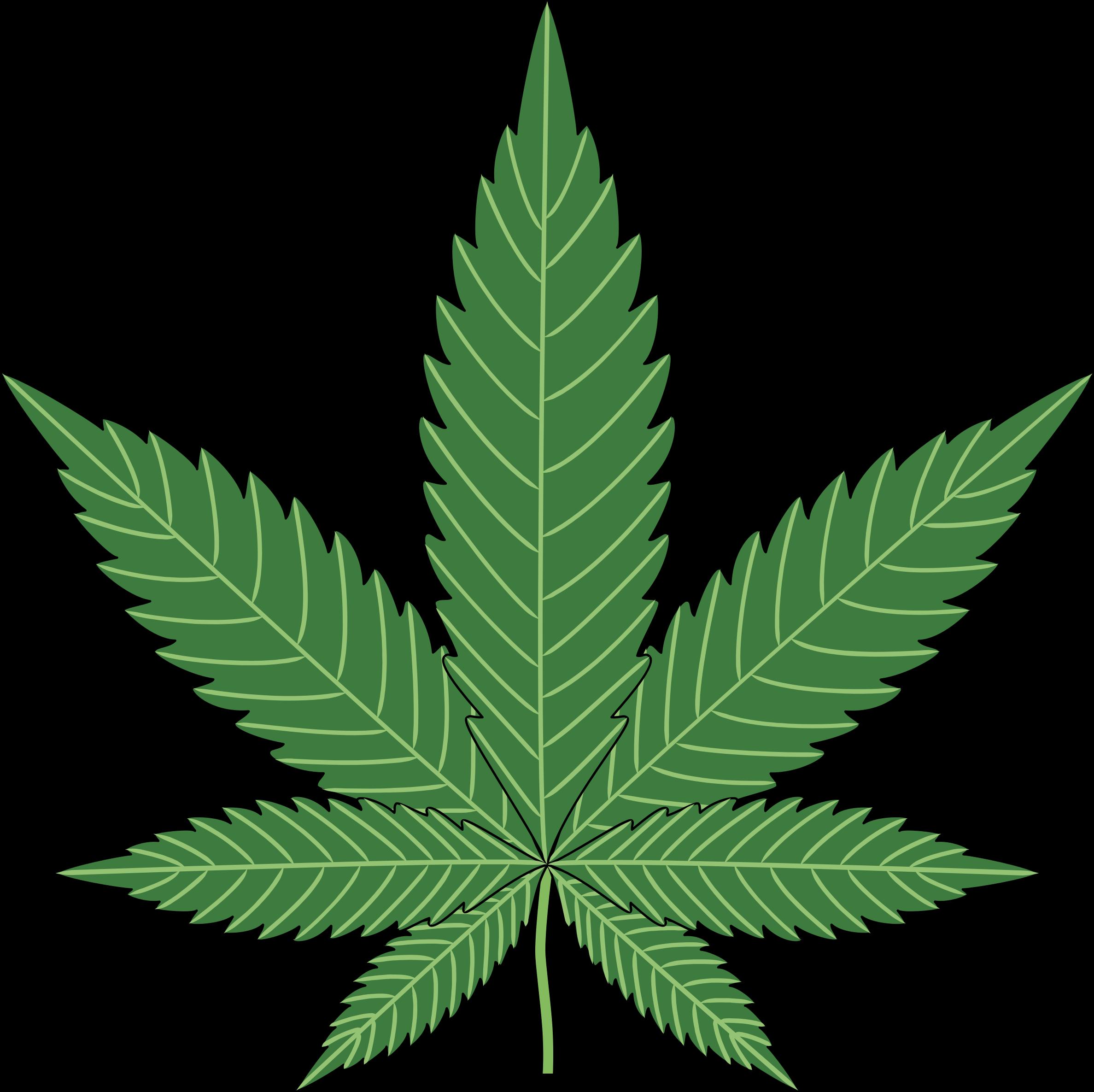 Cannabis flower clipart