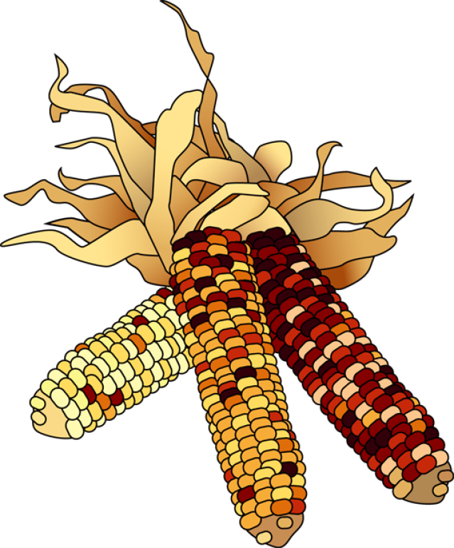 Indian Corn Clipart colorful clip art for the autumn season dried ... png library