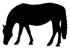 Car rider clipart png freeuse Horse Silhouette png freeuse