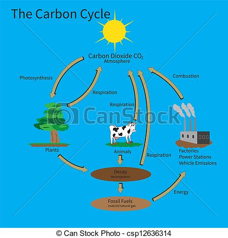 Carbon cycle clip art jpg black and white stock Carbon cycle clipart - ClipartFest jpg black and white stock