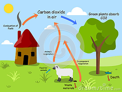 Carbon cycle clip art picture transparent download Carbon cycle clipart - ClipartFest picture transparent download