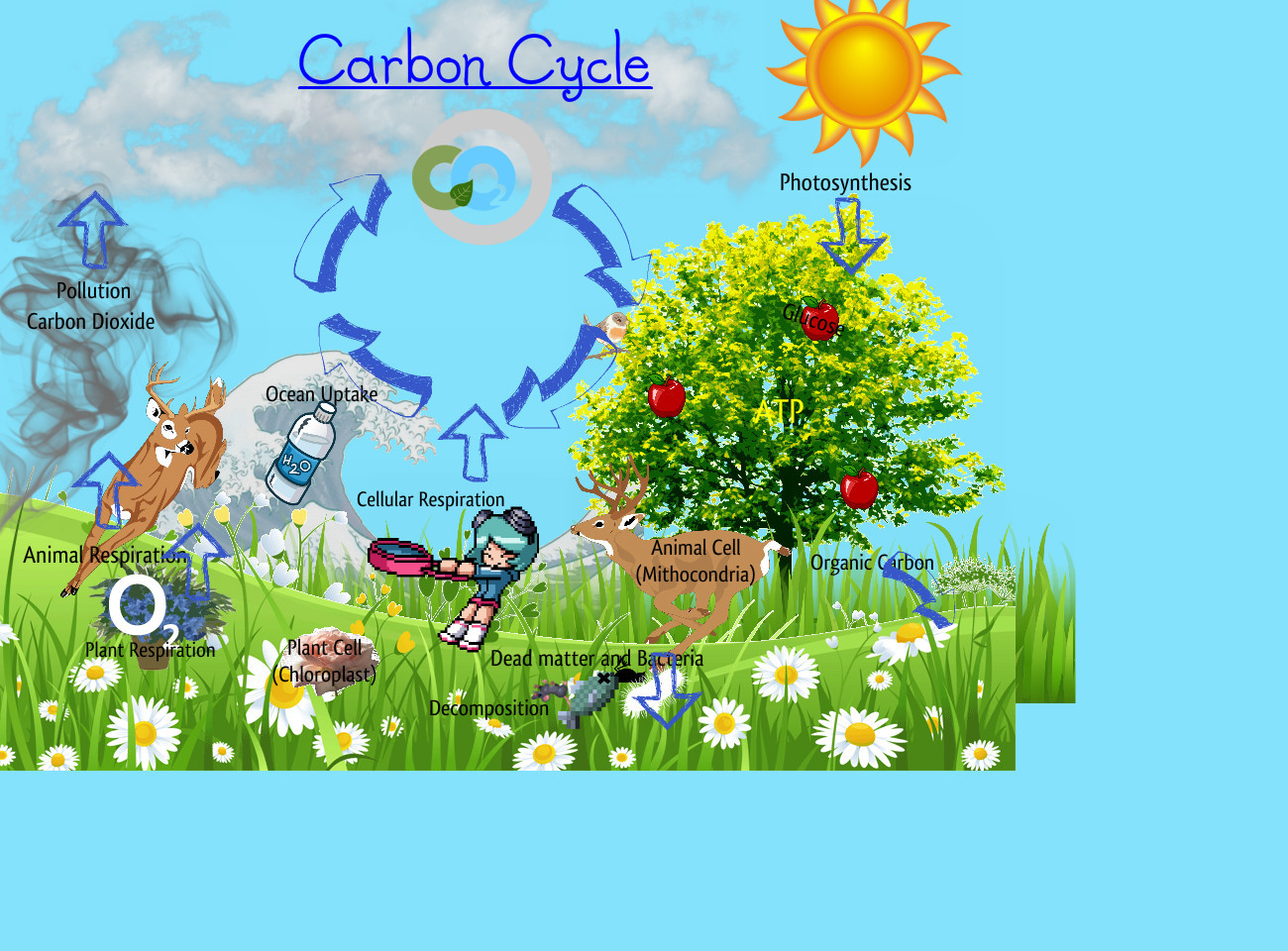 Carbon cycle clip art graphic royalty free download Carbon cycle clipart - ClipartFest graphic royalty free download