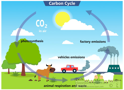 Carbon cycle clipart banner freeuse download Science : carbon-cycle-clipart : Classroom Clipart banner freeuse download