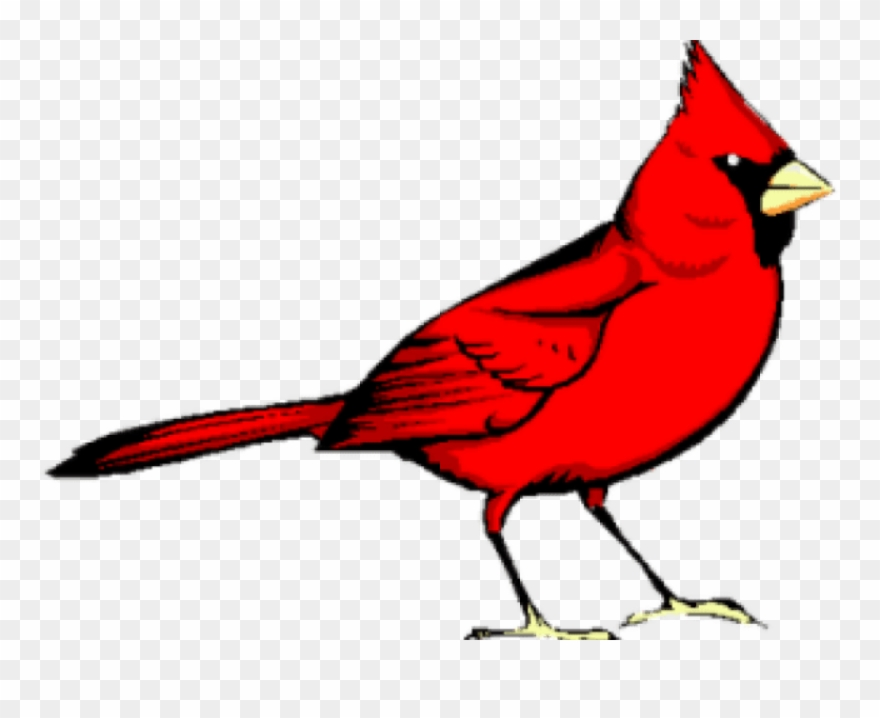 Red bird clipart free picture free download Graphic Freeuse Library Cardinal Clipart - Red Bird - Png Download ... picture free download