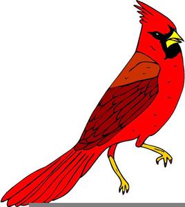Free cardinal bird clipart png transparent stock Cardinal Bird Clipart | Free Images at Clker.com - vector clip art ... png transparent stock