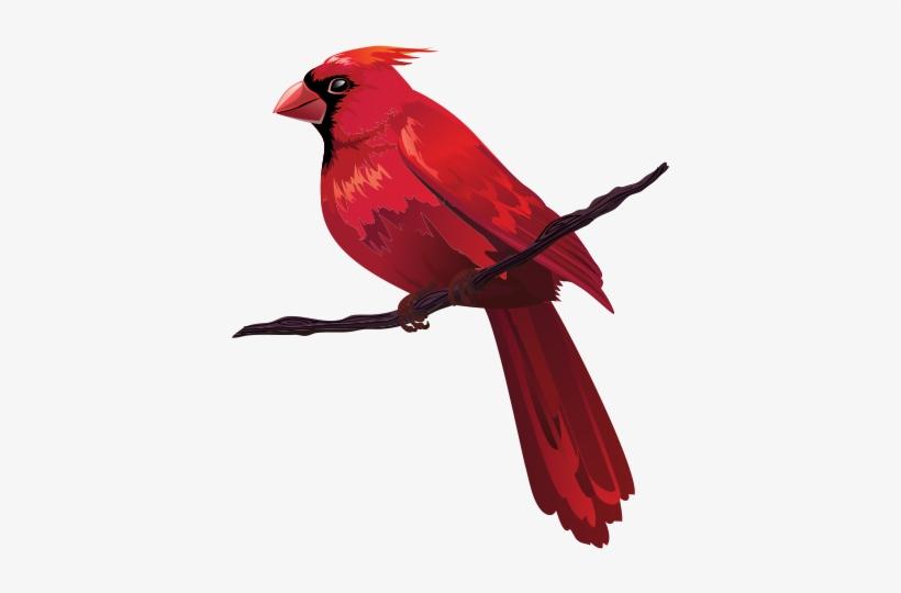 Cardinal on branch clipart clipart transparent download Bird Euclidean Vector Red Clip Art - Cardinal Cartoon On Branch ... clipart transparent download