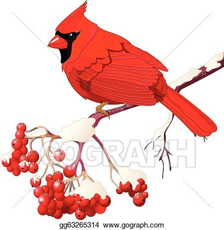 Cardinal on branch clipart clipart transparent library Vector Stock - red cardinal bird. Clipart Illustration gg63265314 ... clipart transparent library