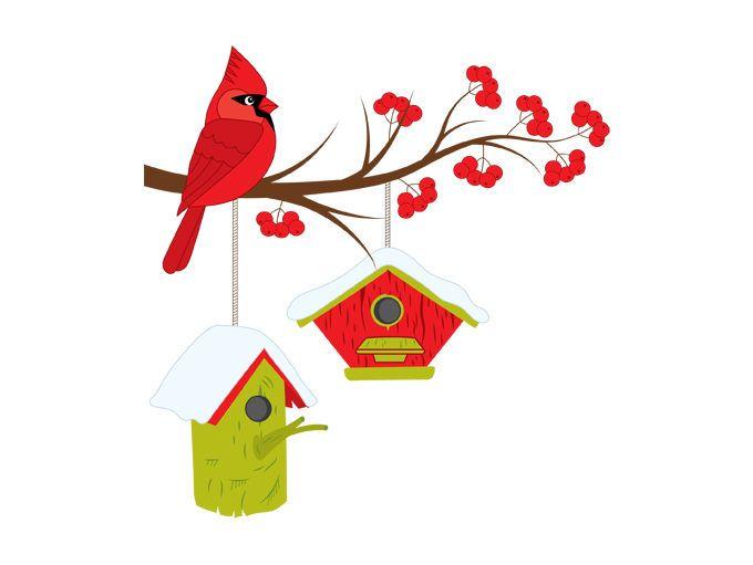 Cardinal on branch clipart clip art stock Christmas Cardinal On Branch Clipart - Digital Vector Cardinal, Bird ... clip art stock