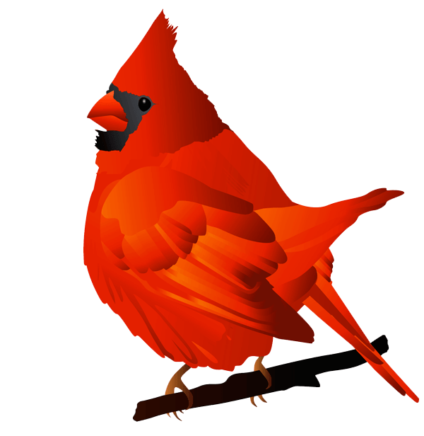 Cardinals baseball clipart free download picture free stock Cardinals Clipart Group (56+) picture free stock