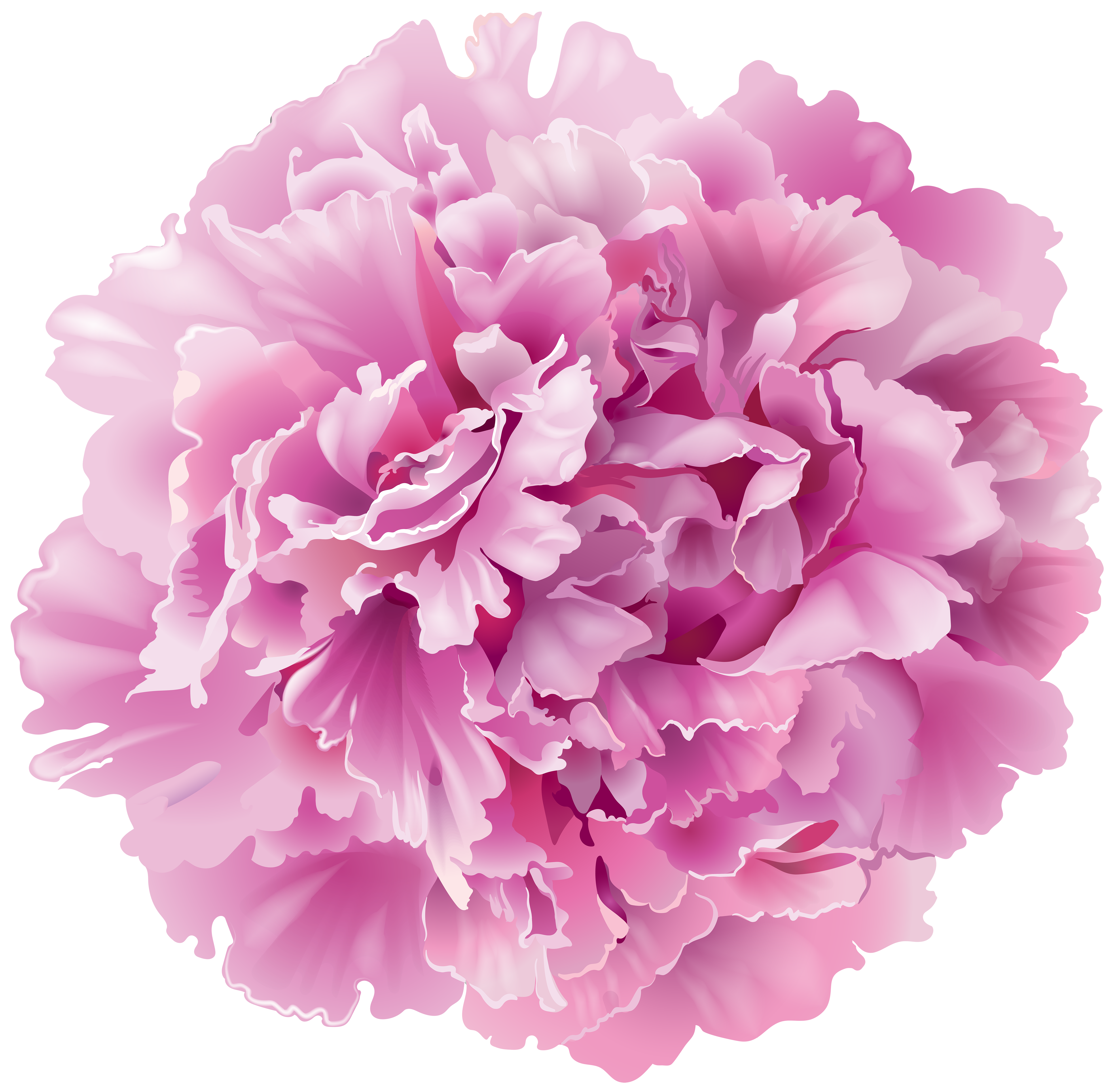 Peony flower clipart image black and white library Peony Transparent PNG Clip Art Image | Gallery Yopriceville - High ... image black and white library