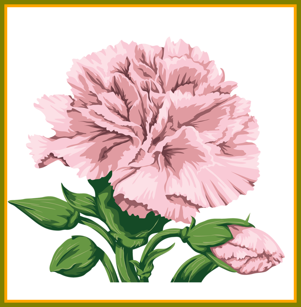 Carnation flower clipart svg library library Shocking Best Carnation For Flower Clipart Inspiration And Popular ... svg library library