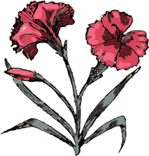Carnation flower clipart clip freeuse library Carnation Flower Clip Art at Clker.com - vector clip art online ... clip freeuse library