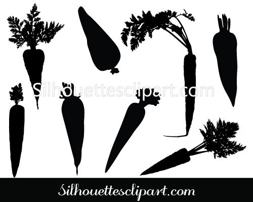 Carrot Vector Graphics | AGRICULTURE VECTOR | Vector graphics ... transparent