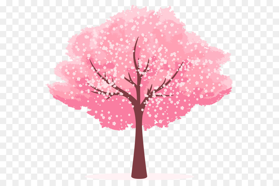 Cartoon cherry blossom clipart clip art download Cherry Blossom Tree Drawing png download - 620*600 - Free ... clip art download