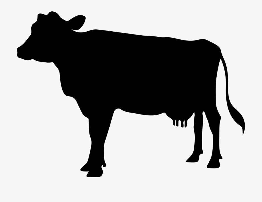 Cartoon cow silhouette clipart clip black and white stock Cow Png - Transparent Cow Silhouette, Cliparts & Cartoons - Jing.fm clip black and white stock
