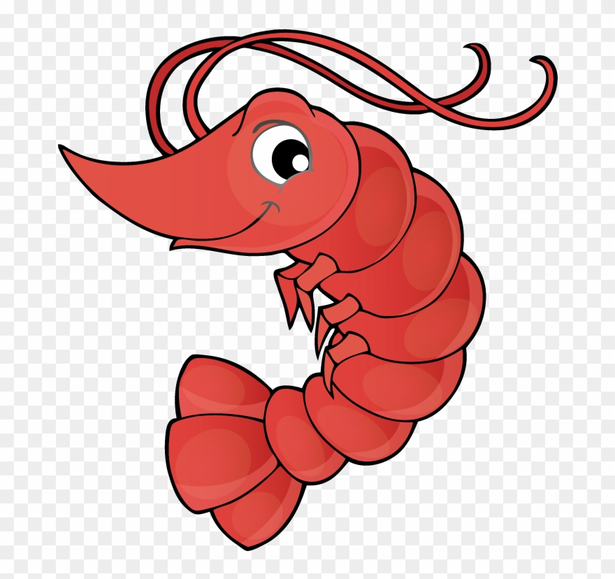 Cartoon crawfish clipart free clip transparent download Vector Transparent Library Crawfish Clipart Lobster - Shrimp Drawing ... clip transparent download