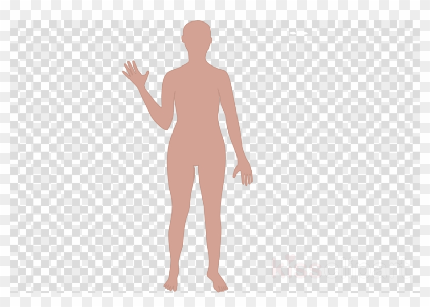 Cartoon Human Body Outline Clipart Human Body Drawing - Man Using ... clip art black and white download