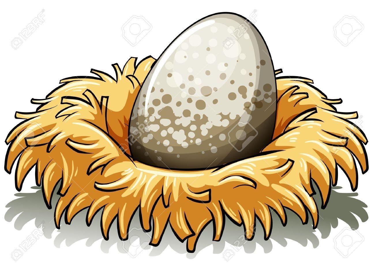 Suddenly Cartoon Birds Nest 8 421 Bird Stock Illustrations Cliparts ... image library