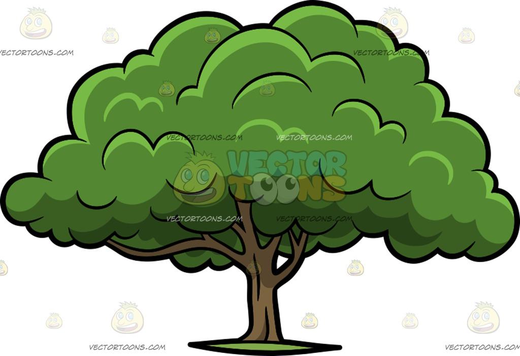 Cartoon oak tree clipart image royalty free stock Cartoon Oak Tree Group with 58+ items image royalty free stock