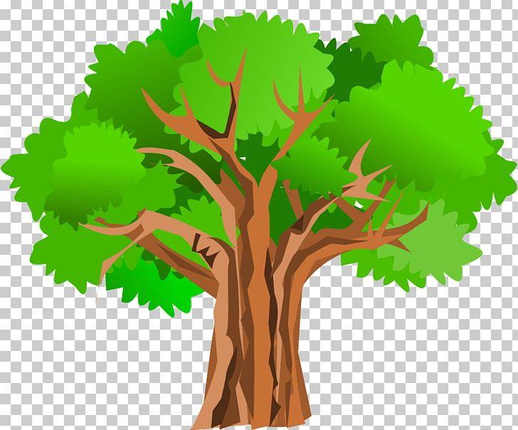 Cartoon oak tree clipart clipart transparent stock Tree Giant Sequoia Oak PNG, Clipart, Adobe Illustrator, Blog, Branch ... clipart transparent stock